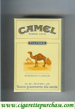 Camel Filter Generous Flavour cigarettes King size hard box