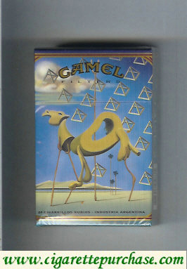 Discount Camel Filters collection version ART Collection hard box cigarettes