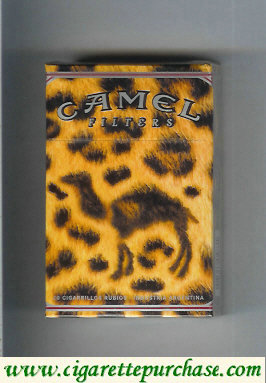 Discount Camel Night Collectors Lounge Filters cigarettes hard box