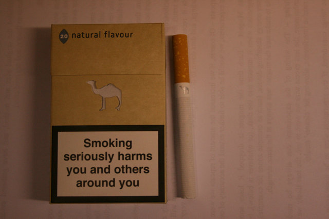 Camel Since 1913 Natural Flavour cigarettes hard box
