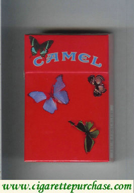 Discount Camel collection version with butterflys cigarettes hard box