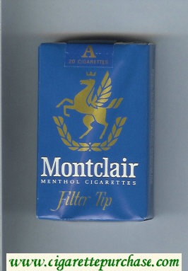 Discount Montclair Filter Tip Menthol Cigarettes soft box